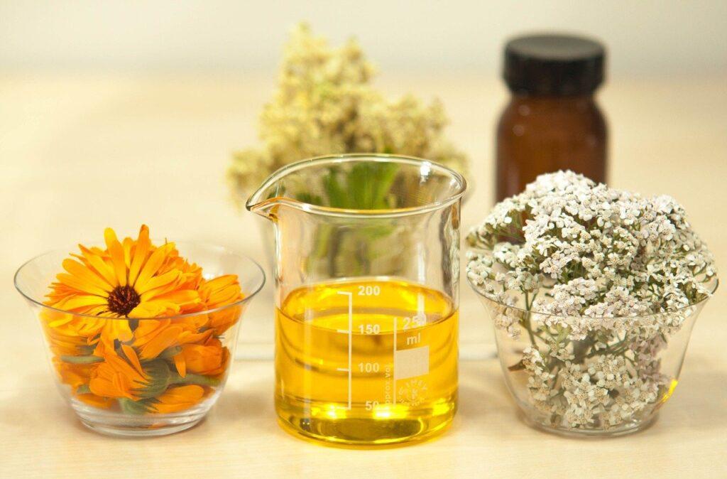 Matières premières pour concocter une huile de jojoba